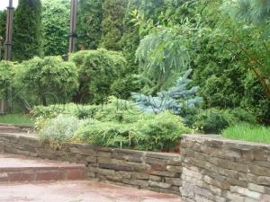 озеленение и благоустройство