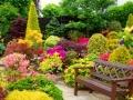 Готовый сад