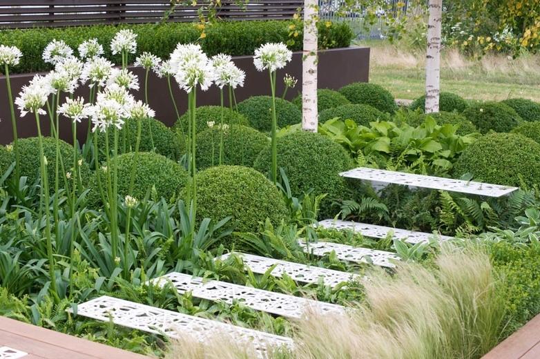 Современный сад в ландшафтном дизайне