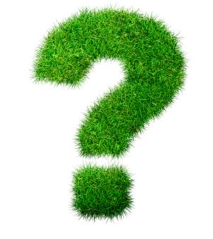 Ландшафтный дизайнер или садовод-любитель?